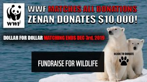 DONATE TO WWF TODAY!