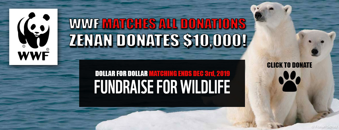 Click here for WWF Dollar For DollarDonation 2019